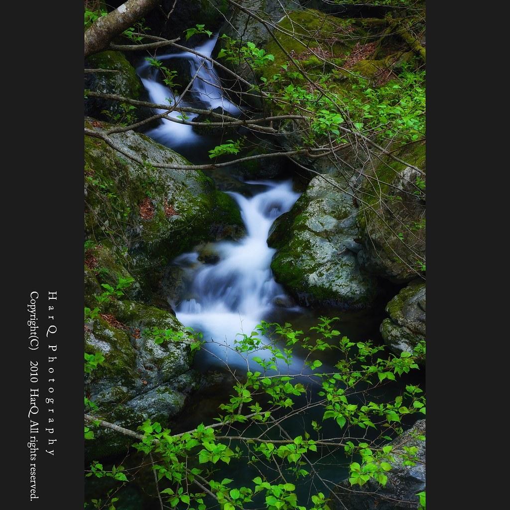 Clear Stream ( Flows in Fresh Green ) *