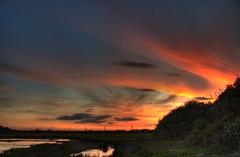 One Year on Flickr (Chris McLoughlin) Tags: sunset england yorkshire 18mm70mm fairburningsrspbreserve sonyalphaa300 chrismcloughlin