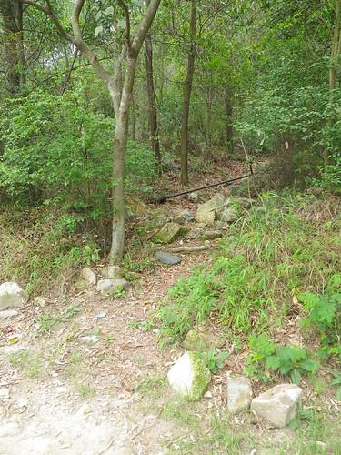 20110602 Super Hot Lost Trail Run