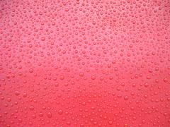 water beads on wax