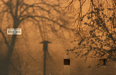 Róna utca (sonofsteppe) Tags: street winter light shadow urban brown black detail building tree art lamp monochrome horizontal wall dark golden daylight stem mural hungary exterior outdoor bare budapest nobody explore shade series pentacon exploration tone manualfocus streetname twiggy 135mm bough streetplate wallscape sonofsteppe pusztafia zugló utcatábla streetplatesofbudapest nagyzugló rónautca urbanlifeoftrees