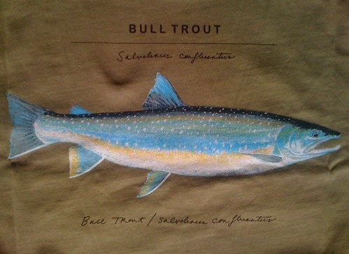World Trout T-Shirt