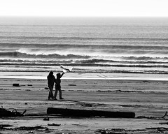Beach Combing (by Steve G. Bisig)