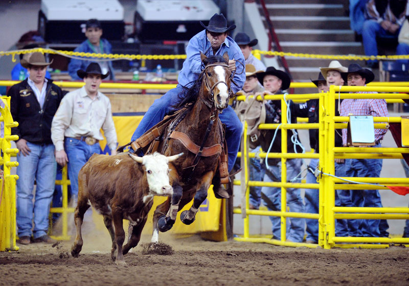 20090116_STOCK_SHOW_GOULDING