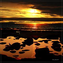 Sunset (steinliland) Tags: ocean sea beach seagull shore midnight lofoten soe utakleiv sunreflections the4elements anawesomeshot karmanominated ishflickr citrit goldstaraward steinliland alemdagqualityonlyclub grouptripod saariysqualitypictures lofotesislands