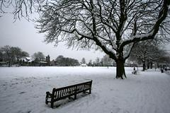 Snow on Twickenham Green