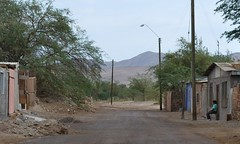 Quillahua, an environmental catastrophe (Fernando Mandujano) Tags: chile desert oasis pollution ambiente contamination antofagasta contaminacin atacamadesert environmentalcatastrophe quillahua catstrofeambiental