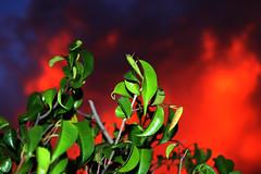 teve espetculo no cu! (LucianaSerra) Tags: cores sopaulo ceu fico cucolorido colorido nvens espetculo lucianaserra