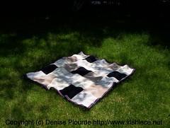taci blanket on lawn