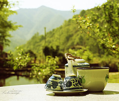 Tea Time (ShanLuPhoto) Tags: china green cup sunshine spring tea teatime wuyuan jiangxi