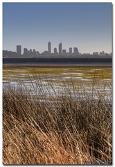 Waterside (Banchee) Tags: city morning skyline canon river reeds tide low perth tidal hdr swanriver photomatix canon450d