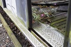Returning to nature (routemaster_fan) Tags: london underground grafitti decay tube trains londonunderground railways thetube centralline londonist tubestock 72ts 62ts hainaultdepot
