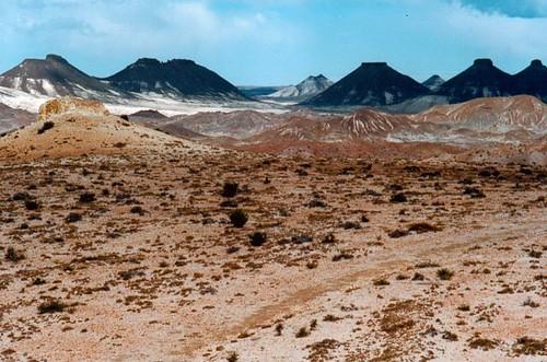 Dinosaurios en Patagonia