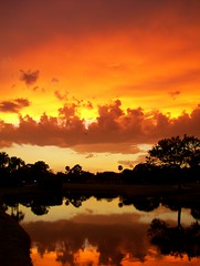 SANGRIA SKY (carolynthepilot) Tags: travel sunset vacation sky lake reflection nature water beautiful clouds golf island gold golden heaven published paradise photographer calendar image florida kodak getaway unique postcard dream award muse international bbc winner tropical sarasota times summertime countryclub firstplace usatoday fabulous visual goldensunset geotag sangria global nationalgeographic awardwinningphoto editorschoice coverphoto bestphoto goldenwings publishedphoto floida worldtraveler worldtraveller winningphoto anawesomeshot kissedbylight colorsofheaven waterenvirons carolynbistline carolynthepilot sangriasunset bistline bbcsponsor bbcsponsored carolynsuebistline httpfiveprimeorghivemindtagsbbcsponsored rudysuter