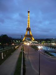 Eiffel tower Paris 521