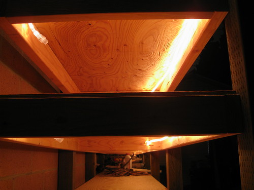 rope lighting inside front edge of 2x4 shelf supports