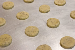un-baked poppy seed cookies