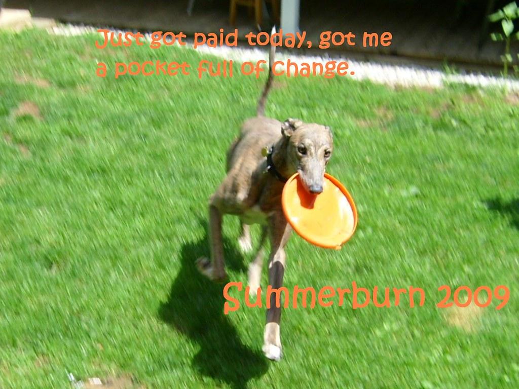 summerburn 09 disc 2 w/tracklist below