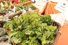 Bellevue Farmers Markets Guide | Bellevue.com