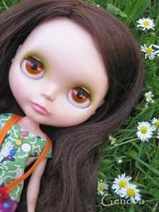 Lily May