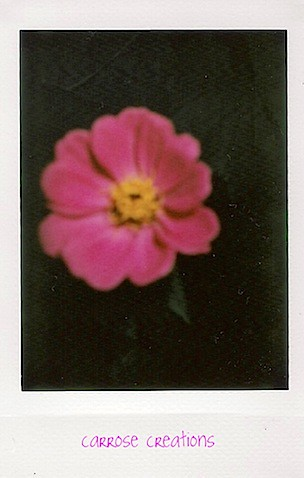 {365} 130 Flowers