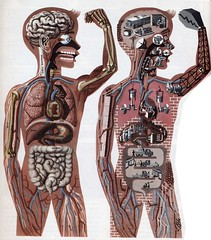 The body works like a machine by Sandra Eterovic