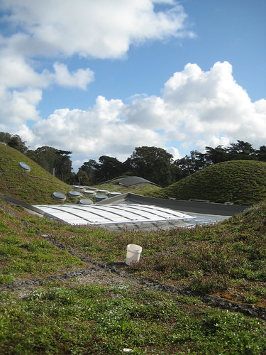 2 acres of living roof