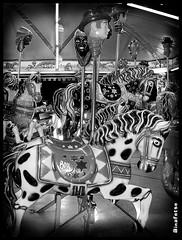 Carrousel (Naitoyuki4444710) Tags: pink wallpaper paris anime art japan illustration lune logo de photography petals rainbow spain asia kei pics web banner goth manga super blogger hyde junior oriental visual vamps larme larcenciel suju heechul naitoyuki ainafetse