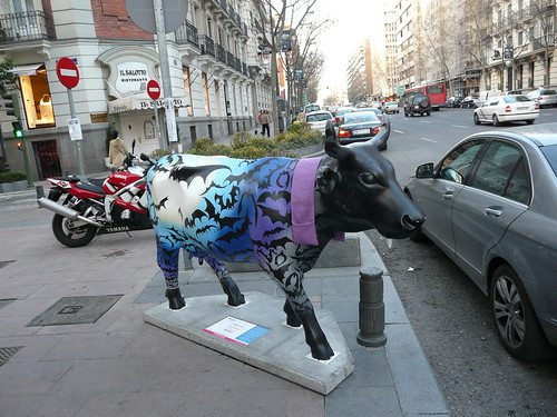 044_Midnight Cow