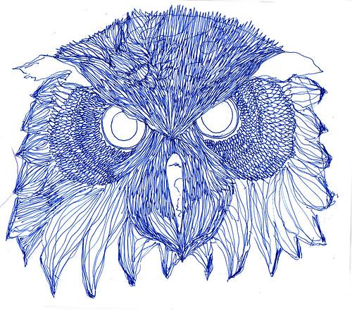 NEVER DREW AN OWL