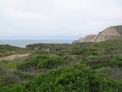 Beach access trail from parking lot (Montara, California, United States) Photo