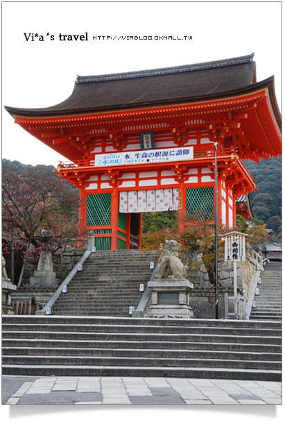 【京都春櫻旅】京都旅遊景點必訪~京都清水寺之美京都清水寺4