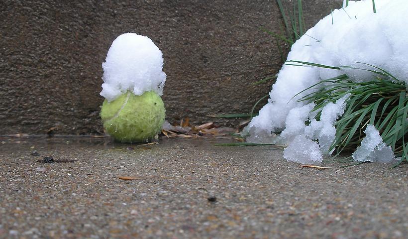 Snow Ball 2