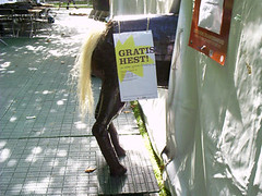Horse (kjeik) Tags: horse oslo norway poster theater theatre tent pr neuf uio prop teater dns chateauneuf chateu studentersamfundet studentfestival detnorskestudentersamfund chateuneuf studentersamfund studenttheatre teaterneuf studio05 teaterteltet