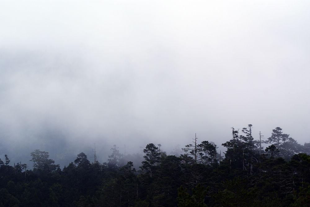 奇萊Day3-80 下雨了