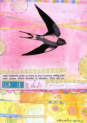 swallows sit up straight (sarah ahearn) Tags: art collage mixedmedia acryilic nahcottagallery enormoustinyartshow sarahahearn sarahearn