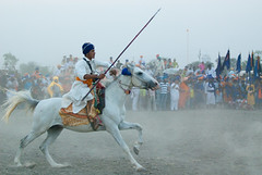 Charge of the Light Brigade (gurbir singh brar) Tags: horse training riding warrior sikh punjab rider equestrian wargames singh skill khalsa brar gurbir nihang tentpegging gurbirsinghbrar sursingh bidhichand