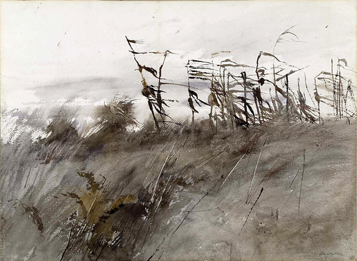 the andrew wyeth plate george jensen