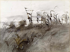Andrew Wyeth: November First, 1950 (americanartmuseum) Tags: saam smithsonianamericanartmuseum graphicmasters