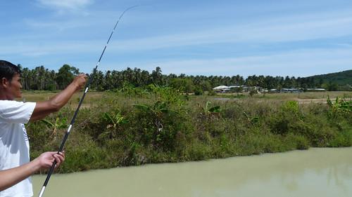 Koh Samui Skylake fishing park コサムイ 淡水魚 釣り0010