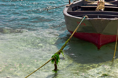 barca (albert23it) Tags: leica barca mare 90mm salento puglia m9 elmarit