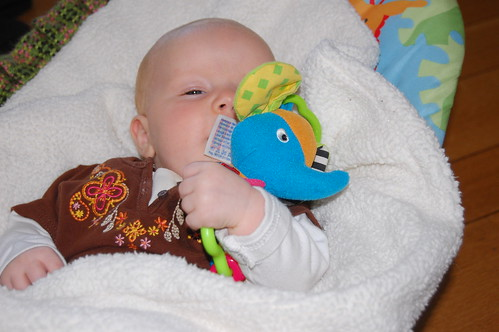 Ahhhh - sweet tasting elephant toy!