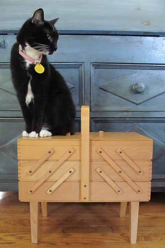 Blue and the expandable sewing box