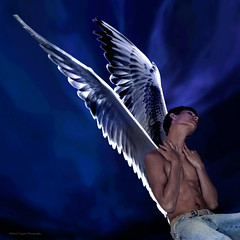 Fly Blackbird Fly - davidr (Michael Taggart Photography) Tags: gay shirtless portrait man hot cute sexy male men guy beautiful muscles night photoshop fly wings artwork photoshoot lads muscle models handsome guys attractive lad dreamy abs blackbird goodlooking sixpack malemodel teleidoscope 6pac