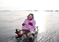 Fun on ice. (eτi) Tags: sun lake ice meer sled zon slee ijs loosdrecht madelief plassen loosdrechtse