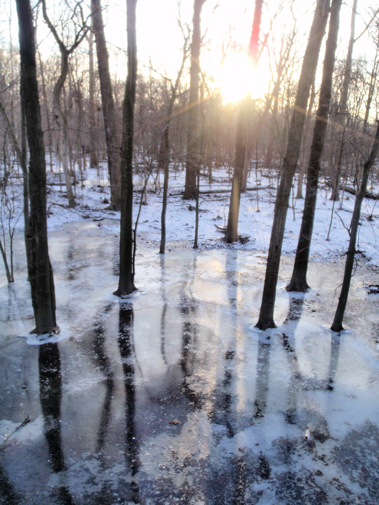 Photo of  Wildwood Metropark - Corey Rd. Loop Trail