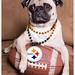 Go Steelers! by [Christine]