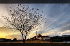 The Tree and The Mosque (buyie - think and shoot !) Tags: