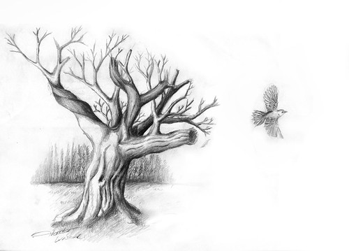 Pencil sketches of trees of nature of sceneries landscapes of flowers of girls of people tumblr of roses of eyes of love