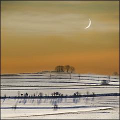 The sunset and the moon (pixel_unikat) Tags: winter sunset moon snow tree landscape austria bush soe muehlviertel 500x500 tonemapped justimagine theunforgettablepictures natureselegantshots multimegashot vanagram pixelunikat themonalisasmile magicunicornverybest magicunicornmasterpiece